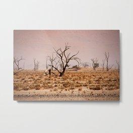 NAMIBIA ... pastel tones IV Metal Print