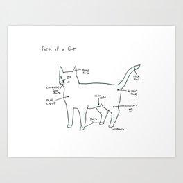 Parts of a Cat Art Print