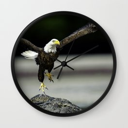 Bald Eagle taking flight Wall Clock