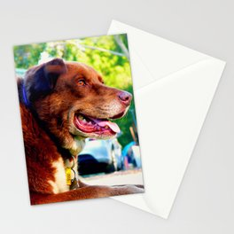 Lieing down dog Stationery Cards