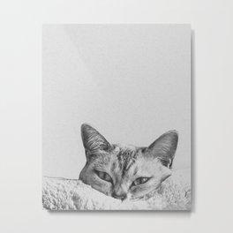 Minimalist grey cat Metal Print