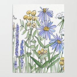 Asters and Wild Flowers Botanical Nature Floral Poster