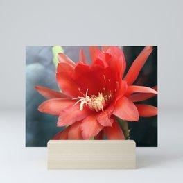 Jungle Cactus Red Mini Art Print