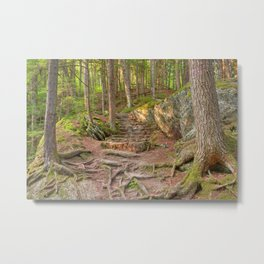 Green Mountain Forest Trail Metal Print