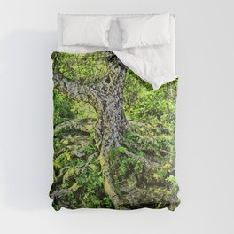 Craggy Pinnacle Trail Tree Comforters