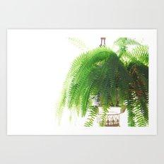 Fern-Green Art Print