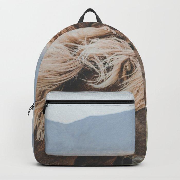 Thingeyrar, Iceland Backpack