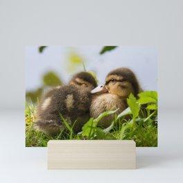 Siblings Mini Art Print
