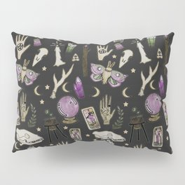 WITCH pattern • in black salt Pillow Sham