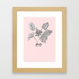 Plants by Bridget Framed Art Print
