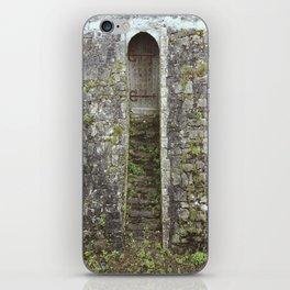 Ancient Doors iPhone Skin