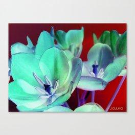 Lilys Canvas Print