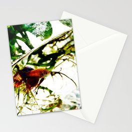 A Fish Named Earl Stationery Cards
