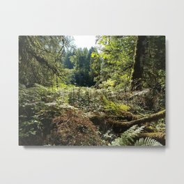 Heart of the woods Metal Print