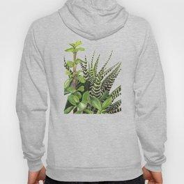 Watercolor Succulents Hoody