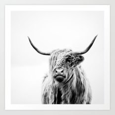portrait of a highland cow Art Print