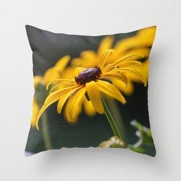 Beautiful Black-Eyed-Susan Throw Pillow