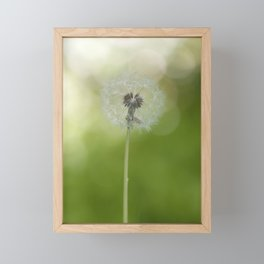Dandelion in LOVE- Flower Floral Flowers Spring Framed Mini Art Print