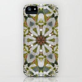 Lacy Serviceberry kaleidoscope - Amelanchier 0033 k5 iPhone Case