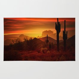 The Essence of the Southwest Rug
