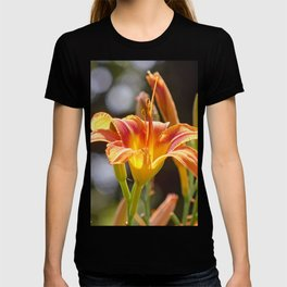 Lilies in the Sunshine T-shirt