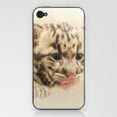 CUTE CLOUDED LEOPARD CUB iPhone & iPod Skin