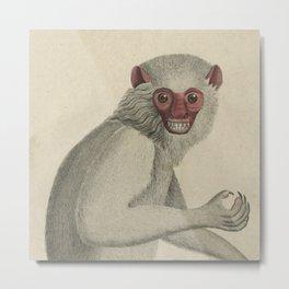Vintage Monkey close-up Metal Print