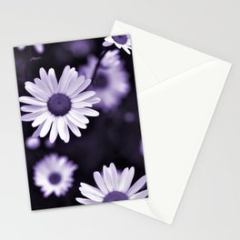 Daisy Wildflowers - Cheers Stationery Cards