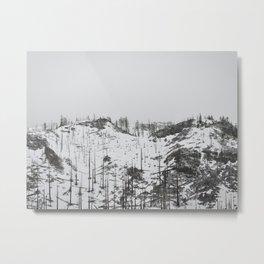 East Oregon Mountain Pass Metal Print
