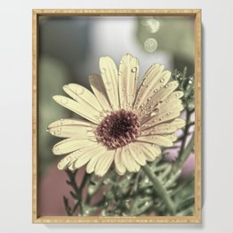 Vintage little flower Serving Tray