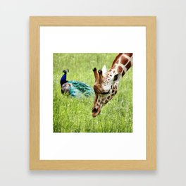 Friendship Framed Art Print
