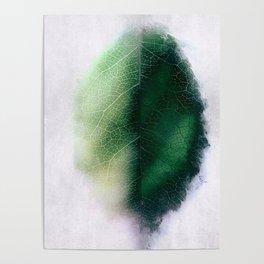 Digital Leaf Poster