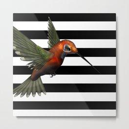 Colorful Hummingbird & Horizontal Stripes Metal Print