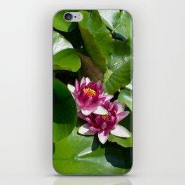 Lotus garden nature photo iPhone Skin