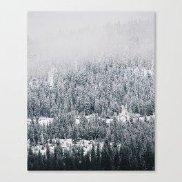 Nature's Gradient Canvas Print
