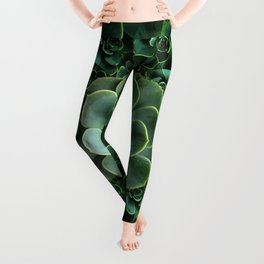 ORNATE JADE & DARK GREEN SUCCULENT  GARDEN Leggings