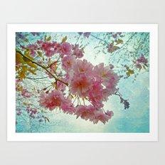 Pink Sakura Art Print