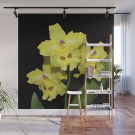 Glorious Golden Orchid - Odontonia Yellow Parade Alpine Wall Mural