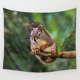 Who, Me? A Saucy Red Squirrel Wall Tapestry