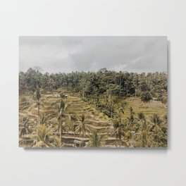 ubud rice terraces Metal Print