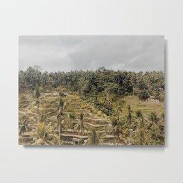 ubud rice terraces Metal Print