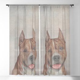 Funny American Staffordshire Terrier Sheer Curtain