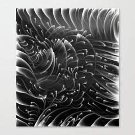 Sea Swirls, Black and White Canvas Print