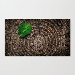 Green leaf Brown wood Canvas Print