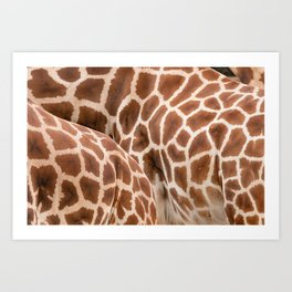 Abstract giraffe picture Art Print