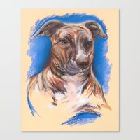 pit bull Canvas Prints featuring Brindle Pit Bull Portrait by M.M. Anderson Designs
