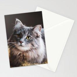 Sweet Kedi I Stationery Cards