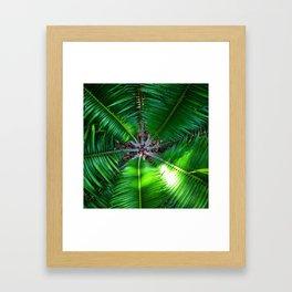 Inside a Palm Framed Art Print