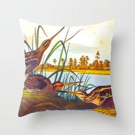 Snipe Duck Vintage Scientific Bird & Botanical Illustration Throw Pillow