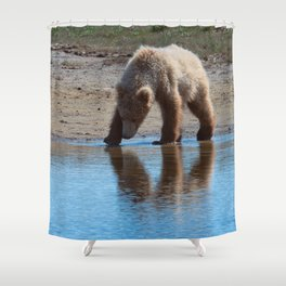 Grizzly Cub Drinking from Stream  Alaska Katmai National Park #Socety6 Shower Curtain